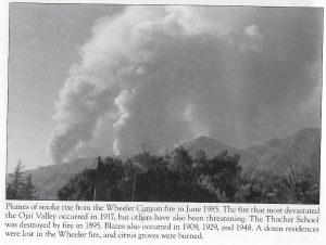 1985 Wheeler Canyon Fire